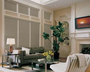 vigtraditional_powerrisetwoone_livingroom.jpg