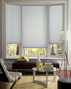 pleatedshades_easyrise_livingroom.jpg