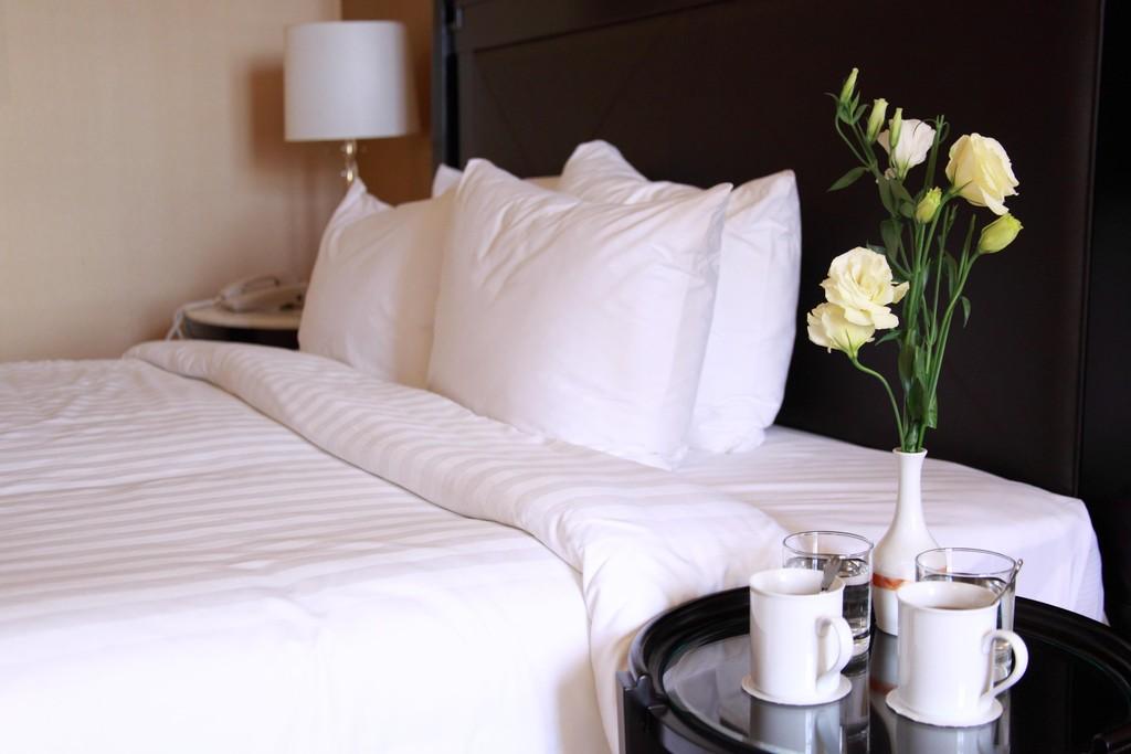 HotelRoom(X).jpg