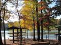 Bond Lake park