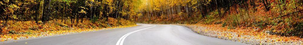 AutumnRoadB.jpg