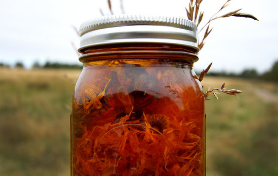 calendulaoil.jpg