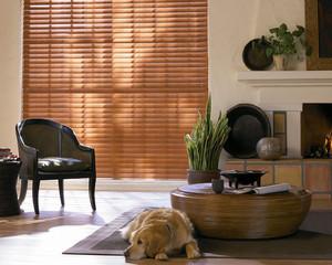parkreflect_cordlock_livingroom.jpg