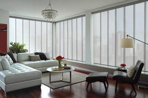 skyline_powerglidetwoone_livingroom_3.jpg