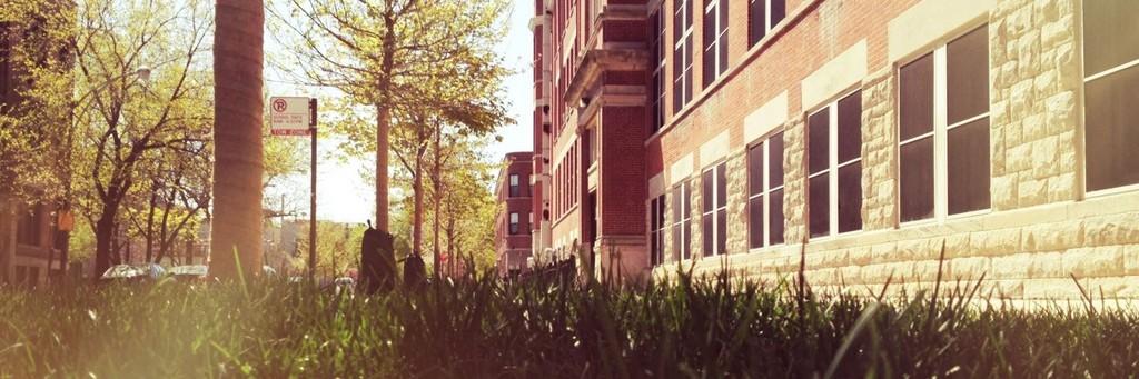 residentialstreet2.jpg
