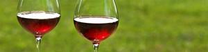 WineGlassesA.jpg