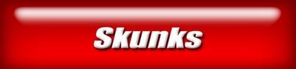 webnav-skunks.jpg